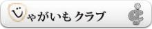 横浜じゃがいもクラブ